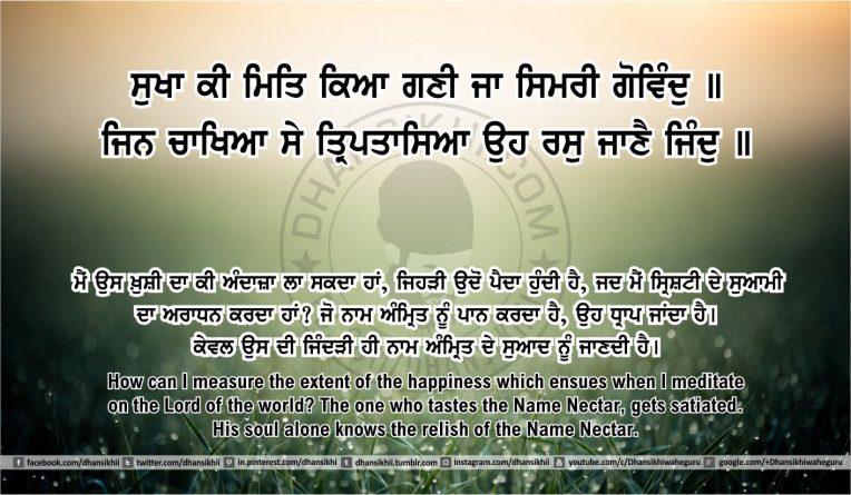 Sri Guru Granth Sahib Ji Arth Ang 48 post 16