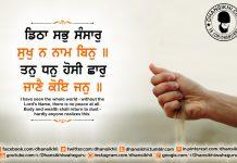 Gurbani Quotes - Ditha Sabh Sansaar Sukh