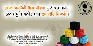 Gurbani Quotes - Naie Visariye Dhrig Jivna