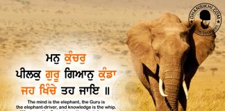 Gurbani Quotes - Man Kunchar Peelak Guru