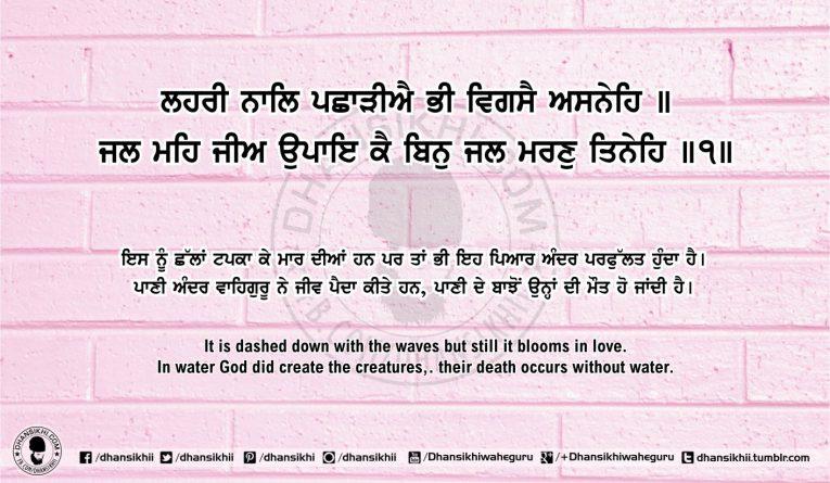 Sri Guru Granth Sahib Ji Arth Ang 59 post 15