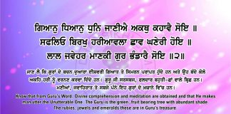 Sri Guru Granth Sahib Ji Arth Ang 59 post 7