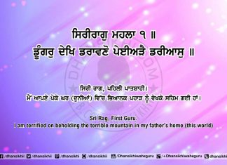 Sri Guru Granth Sahib Ji Arth Ang 63 Post 7