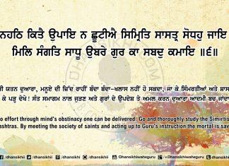 Sri Guru Granth Sahib Ji Arth Ang 65 Post 13