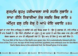Sri Guru Granth Sahib Ji Arth Ang 66 Post 5