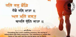 Gurbani Quotes - Har Ras Shhodd Hoshhai