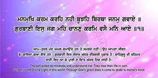 Sri Guru Granth Sahib Ji Arth Ang 67 Post 7