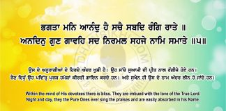 Sri Guru Granth Sahib Ji Arth Ang 69 Post 6