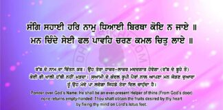 Sri Guru Granth Sahib Ji Arth Ang 79 Post 7